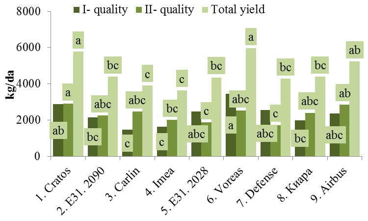 COMPARATIVE STUDY OF GREENHOUSE CUCUMBER VARIETIES