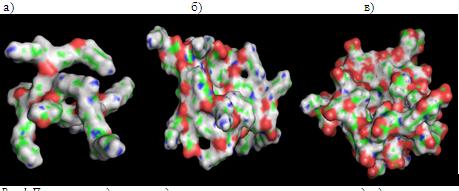 Молекулярно-динамическое моделирование лизиновых дендримеров и их гибридов с биоактивными пептидами