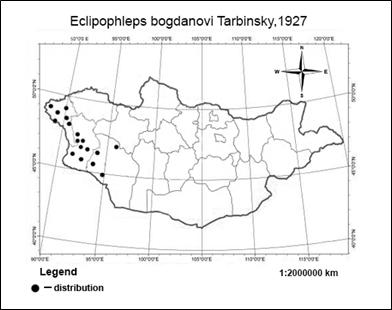 A STUDY ON THE KARYOTYPE OF ECLIPOPHLEPS BOGDANOVI TARBINSKY, 1927 FROM MONGOLIA (ORTHOPTERA: GOMPHOCERINAE)