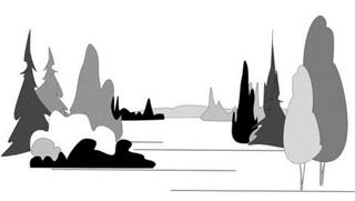 VISUAL PERCEPTIONS AND FOREST LANDSCAPE DESIGN PRINCIPLES ALONG WALKING TRAILS