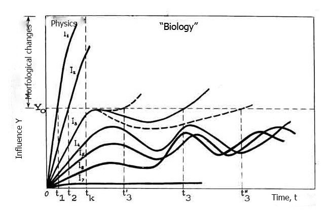 ANALYSIS OF THE MECHANISMS OF ACTION OF ULTRASOUND ON BIOLOGY CELLS (18-23)